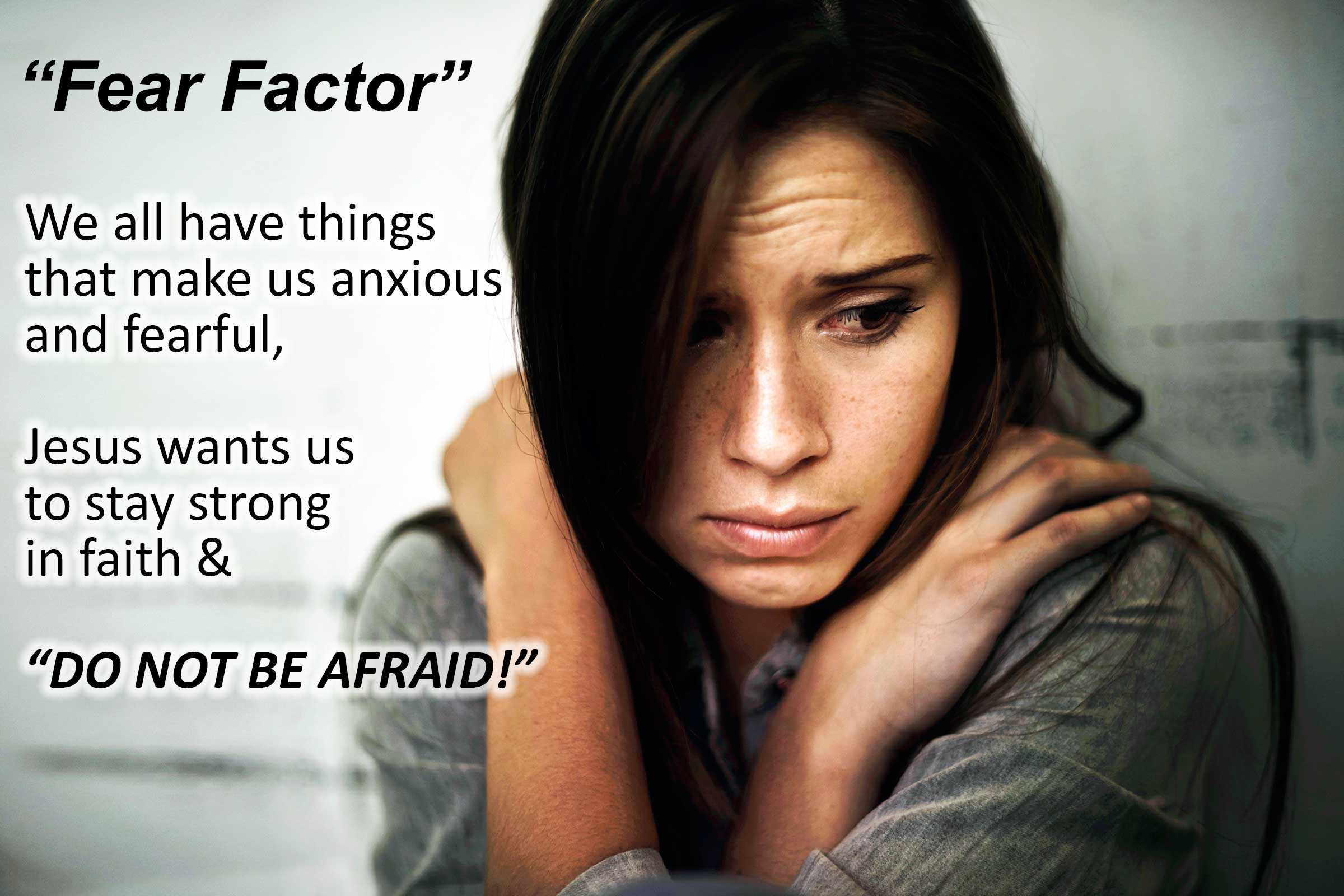 HOMILY HIGHLIGHTS: