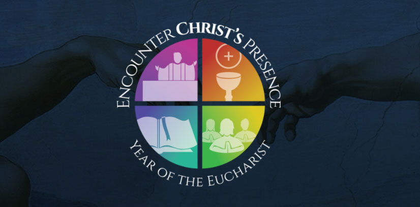 Homily Highlights: Year of the Eucharist